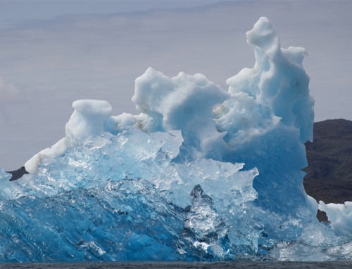 Cool Ice Greenland